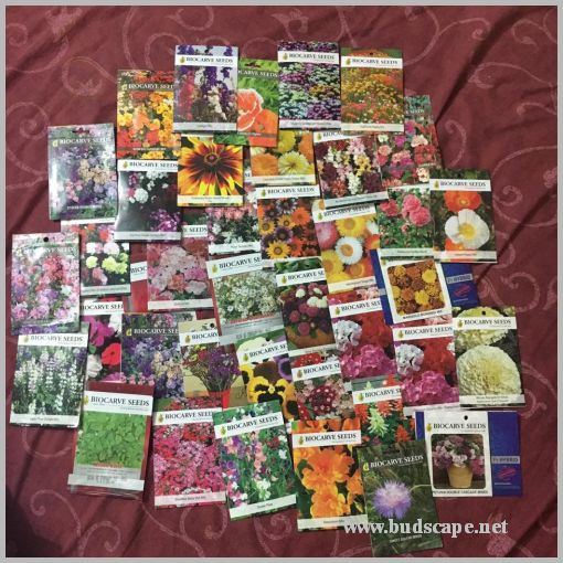 BUYING SEEDS ONLINE IN INDIA