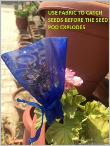 prevent seeds spilling with mesh pouch