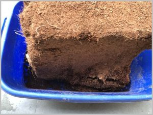coco peat compressed brick