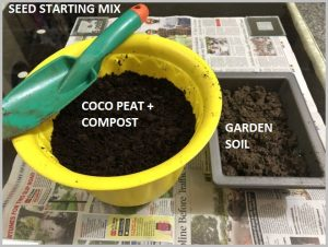 coco peat seeds start mix