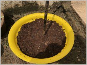 make-topsy-turvy-planter-5