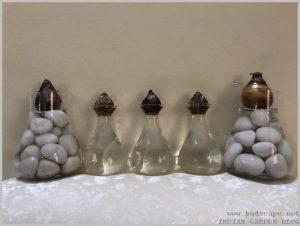 grow-flower-bulbs-water-indoor-2