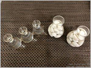 grow-flower-bulbs-water-indoor-3