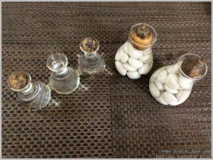 grow-flower-bulbs-water-indoor-5