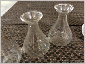 vase-grow-bulbs-water-indoors