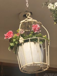 hanging-baskets-petunia-double